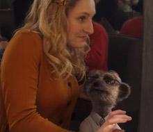Meerkat Meals 'Date Night'