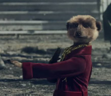 Meerkat Movies 'Hooray'