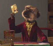 Meerkat Meals 'Party'